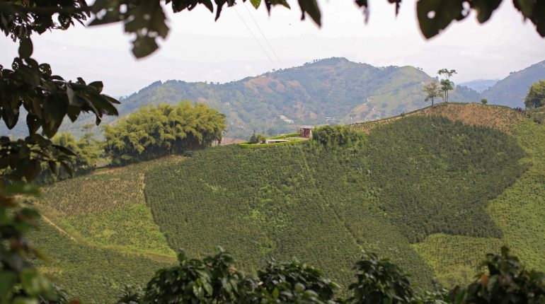 HaciendaElJardin-LasGloritas 35